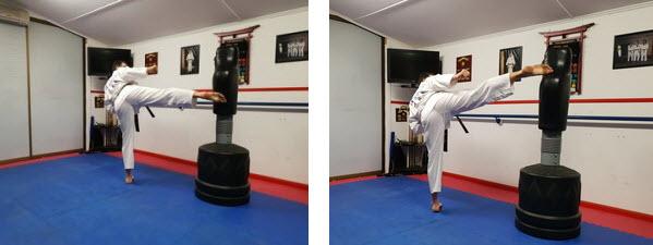 Roundhouse - snap kick