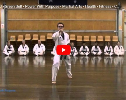 Taekwondo Palgwe 3
