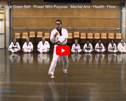Taekwondo Palgwe 4
