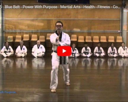 Taekwondo Palgwe 5