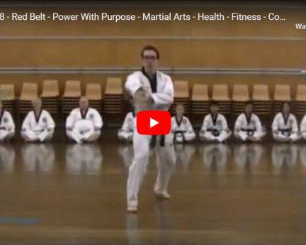 Taekwondo Palgwe 8