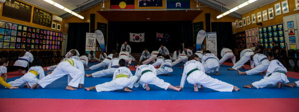 Power with Purpose Taekwondo Classes