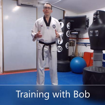Training with Bob